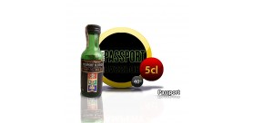 Bouteille miniature de Scotch Whisky Passport 5CL 40 °