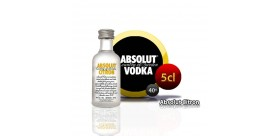 Miniatur Absolut Citron Wodka in 5cl Flasche.