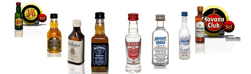 Bottles Miniatures Whiskey Bourbons Vodka Ron